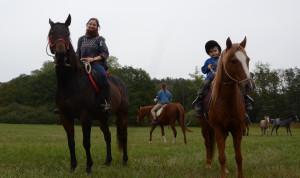 vídendové akce s koňmi