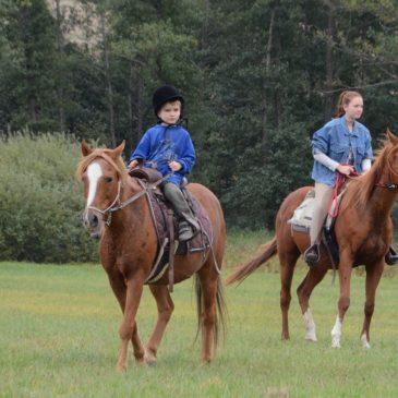 Kinder-Sommercamp mit Pferden