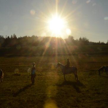 a pár momentek z podzimního víkendu – děti na koních